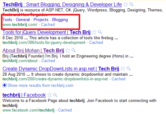 TechBrij Google Sitelinks