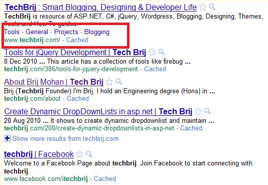 TechBrij Google Sitelinks