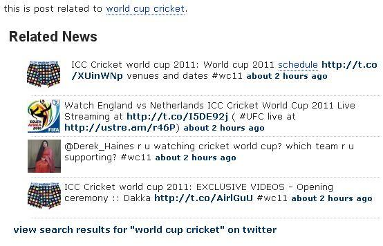tweets by post world cup cricket